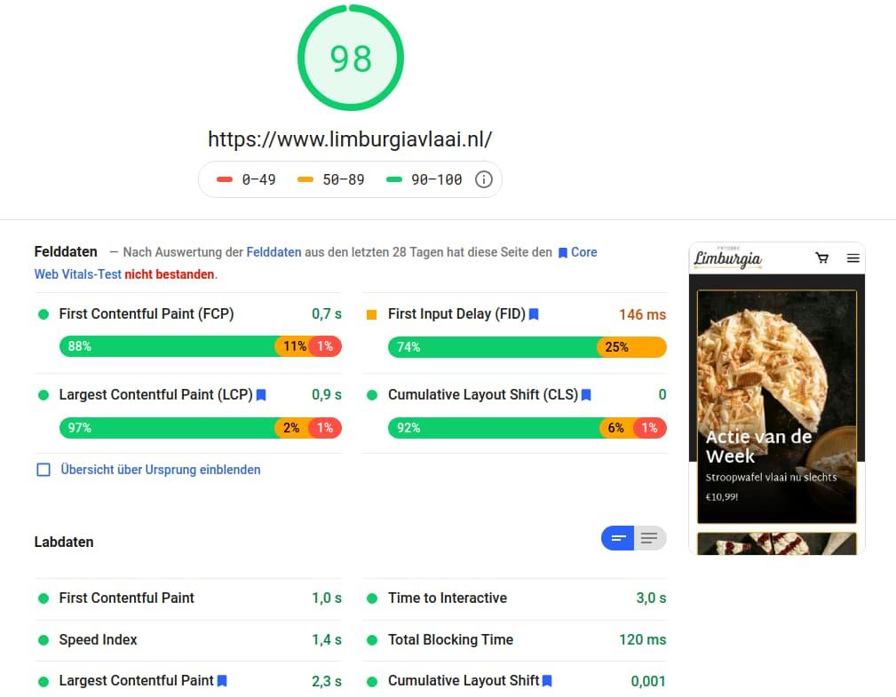 Hervorragende PageSpeed Insights Messdaten mit Hyvä Themes